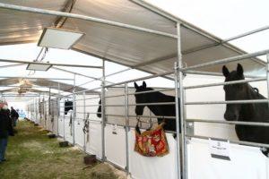 Enirgy-Infraroodverwarming-Veehouderij-Paarden-Stal